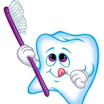 Slikovni rezultat za zubi slike