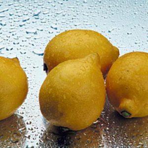 Koristi limuna u kućanstvu