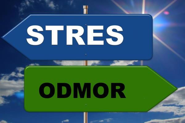 Slobodno odgađajte – što ne raditi dok ste pod stresom