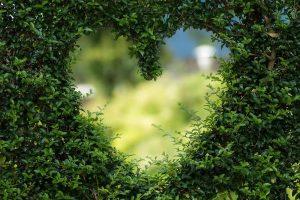 Tipovi ljubavi i ljubavnika [ LJUBAV ]