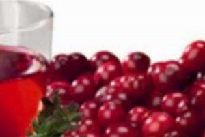 Brusnica - Čaj od brusnice - utjecaj na zdravlje, nuspojave i priprema čaja