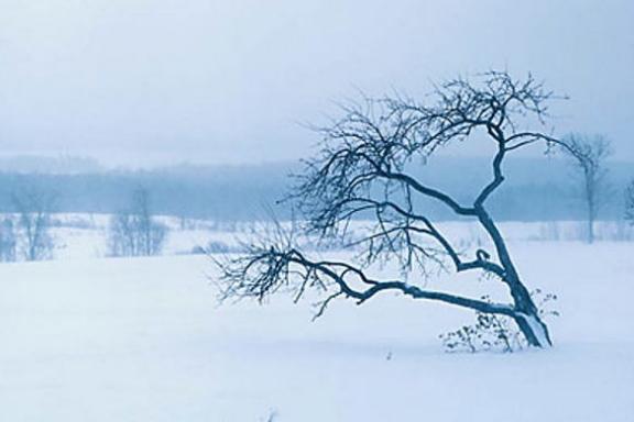Zimske bolesti i tegobe – kako ih se riješiti