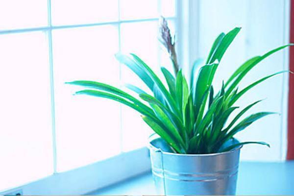 3 trika za uređenje doma koji će vam razvedriti tmurne dane