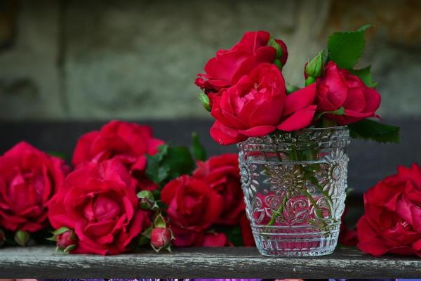 Najpopularnije cvijeće koje se poklanja na Valentinovo