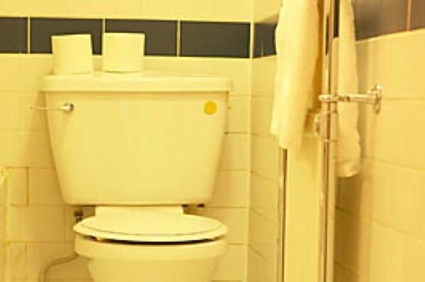 Sanjati TOALET / WC